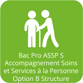 Icône Bac Pro Accompagnement Soins Service Personne Option Structure